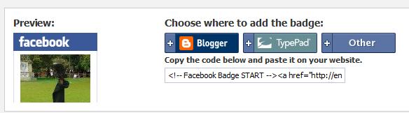 embed Profile badge